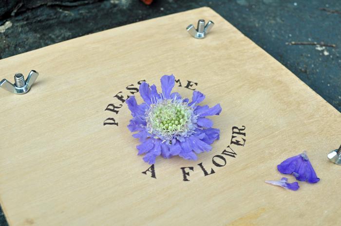 Flowerpress_diy