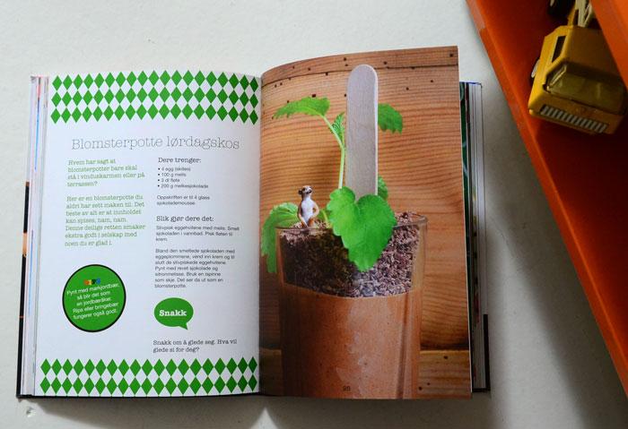 Familiesirkus_book