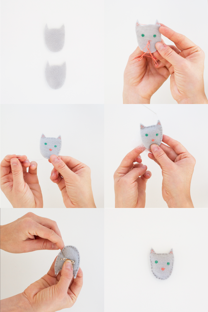 Cat-instructions