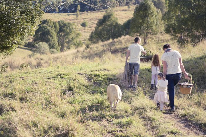 Back hills