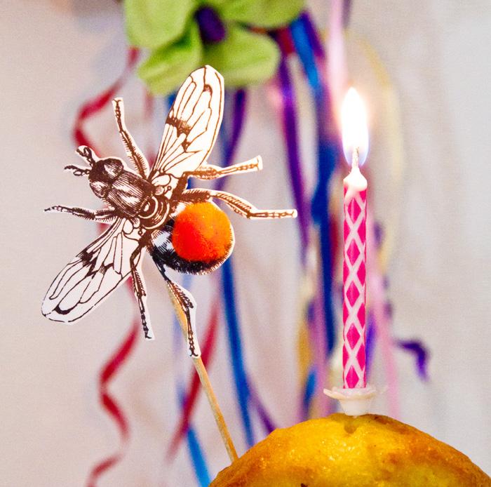 DIY_insect_pompom_cake