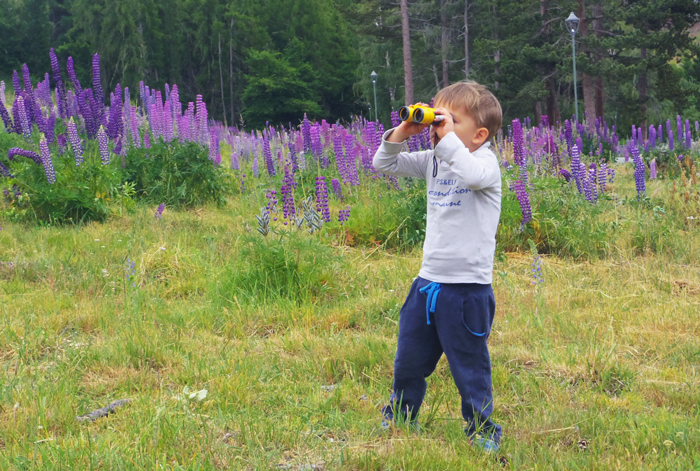 Bloesem kids | Bloesem Gazette: Family vacation to New Zealand | Lake Tekapo exploring